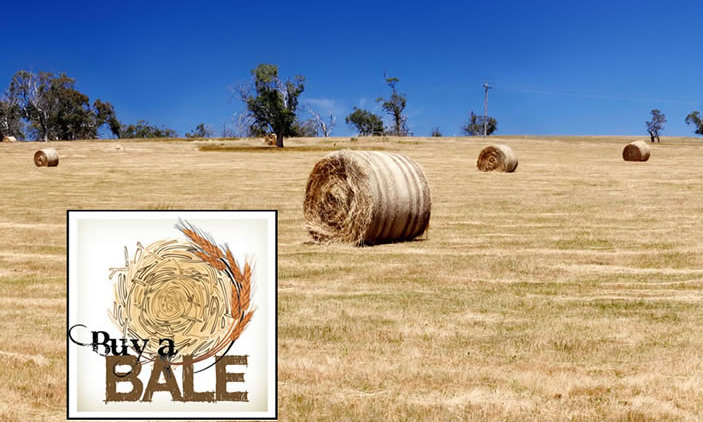 Buy A Bale for farmers in need